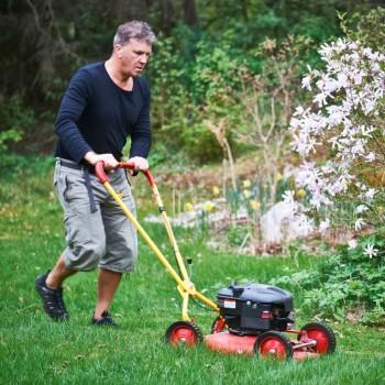Klipper du sällan måste gräset tillåtas vara lite högre. Tar man för mycket på en gång följer tillväxtpunkterna med och mattan blir snabbt gul. På bilden syns skribenten.