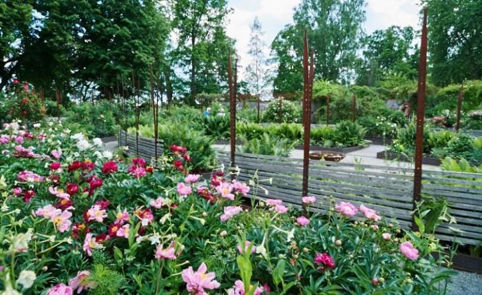 Rosenträdgården i Wij