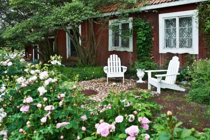Det där med romantisk trädgård är inte Tittes grej. Men helt kunde hon inte låta bli. Framför sittplatsen vid bagarstugan prunkar rosa rosor i massor, bland annat den återblommande 'Cinderella'. Stolarna har Seppo byggt efter en ritning Titte skaffat.