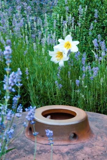 Keramikbehållarens enkla och strikta form samspelar utmärkt med blommande lavendel och liljor. I mötet mellan stramt och yvigt skapas stor trädgårdskonst. En sanning som gäller i såväl smått som stort.