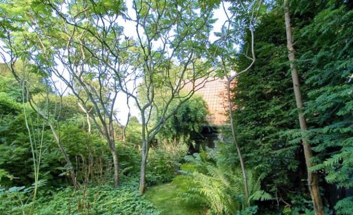 I den halvvilda blomstergården på ena sidan om entrégången snirklar sig gräsgången fram mellan de frodiga växterna. Till vänster syns rönnsumaker Rhus typhina vars lövverk hamnar högre och högre upp ju äldre träden blir. Rakt fram syns det före detta stallet som numera är omgjord till gäststuga.