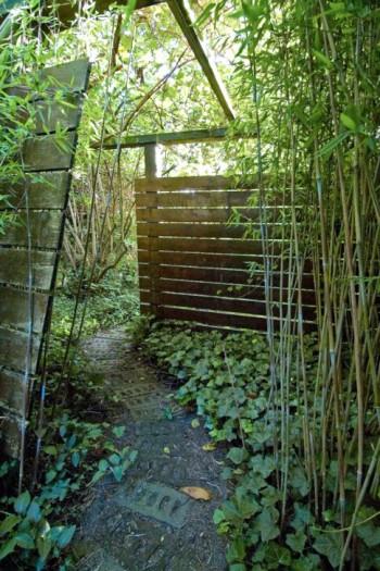 I stället för att gå rakt fram får man lov att ta en sväng mellan planken. En passage där det längre fram är fördolt väcker alltid nyfikenheten. I Per Fribergs trädgård är det här vägen mellan den bakre och den främre trädgården på husets södra sida.