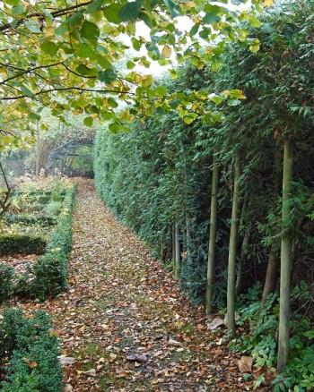 Genom att låta gången längs köks- och kryddträdgården smalna av skapas en illusion av större djup. Falskt perspektiv kallas greppet som är gångbart såväl i stora parker som små radhusträdgårdar.