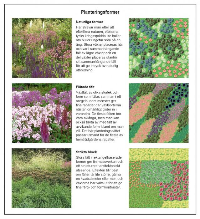 Planteringsformer