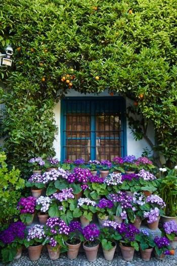 Les patios de Viana, Patio de grilles