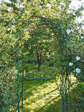 En rosenportal ger atmosfär och vackert växelspel mellan ljus och skugga på marken inunder samtidigt som den förstärker tredimensionaliteten i Maria Björklunds trädgård på Österlen.