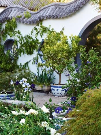 I kinesiska miljöer känner sig alla pioner hemma. Färgskalorna kan gärna vara återhållna, i till exempel blått och vitt.