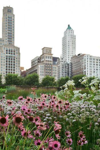 Av alla Piet Oudolfs projekt är nog Lurie Park i Centrala Chicago det mest uppseendeväckande. Kontrasten mellan de prärieliknande planteringarna och skyskraporna är så kraftfull.