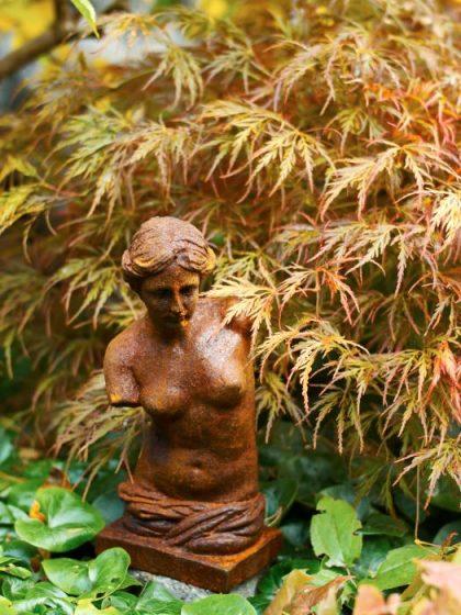 Venus-statyett invid flikbladig japansk lönn.