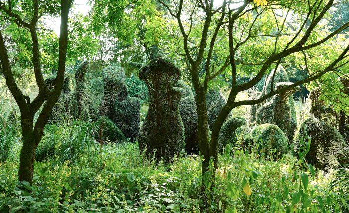 I Henk Gerritsen trädgård De Priona, Holland.