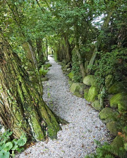 En lätt stiliserad grusgång med japanska inslag. Formen och mönstren i naturens stenar och växter framhävs. Svängar motiveras av någonting, i det här fallet en trädstam. Bild från Hviids have på Fyn.