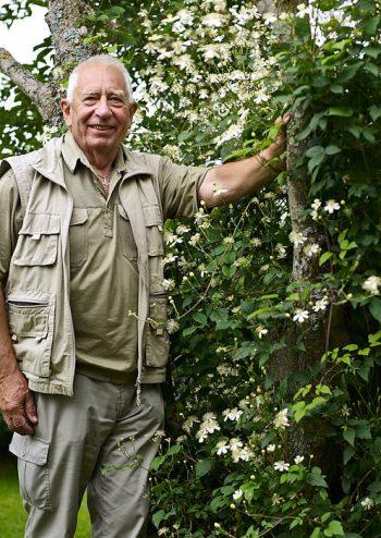 Det är svårt att inte vara nöjd när man som Finn Eldh står invid en japansk magnolia runt vilken en blommande klematis slingrar sig,