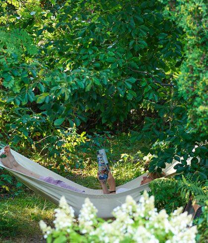 Ingenstans vilar man bättre än under trädkronor. För att få plats på vår helt vanliga villatomt har vi låtit stamma upp vår stora bok, annars skulle den tagit för mycket plats. Nu bildar den bildat tak för, bland annat, hängmattan.