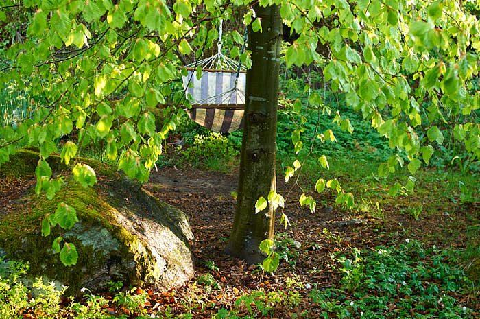 Att vila i en hängmatta under den nyutslagna bokens grenar ger både utevistelse och vacker grönska, båda påvisbart nyttiga för kropp och själ.
