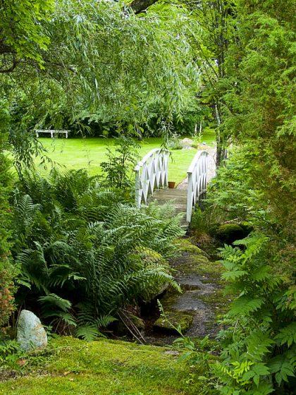 I Småland, mellan skog och äng, skapade Katarina och Sten Dunér sin trädgård Drömmens. Där är det svårt att alltid veta vad som är natur och vad som är trädgård. Det gröna och lummiga skapar välmående.