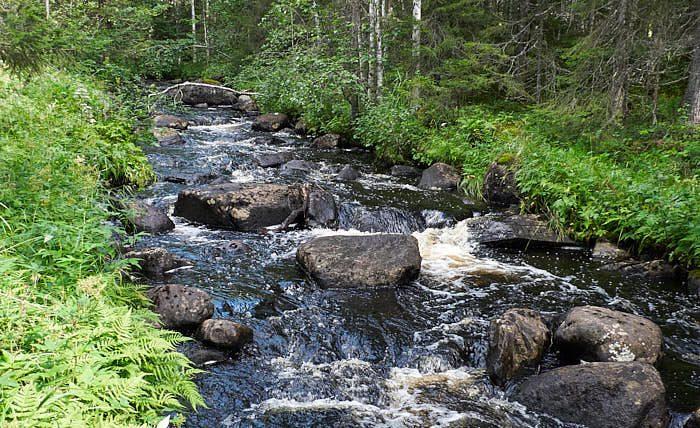 Rinnande vatten är viktigast av allt för att hålla oss vid liv. Att se och lyssna på dess ljud ger lyckokänsla, vare sig det är konstgjort eller naturligt.