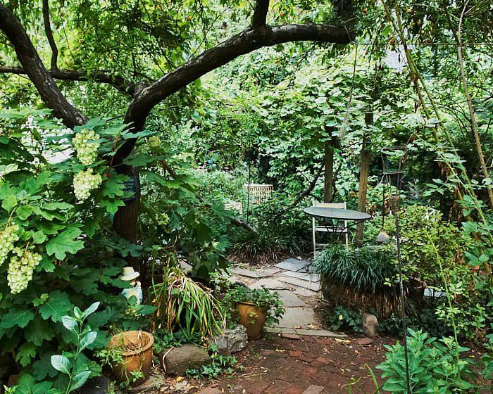 Under persikoträdet med en flikhortensia vid sin sida kan man vila ut i La Plaza Cultural, skyddad från New York-sommarens fuktiga hetta.