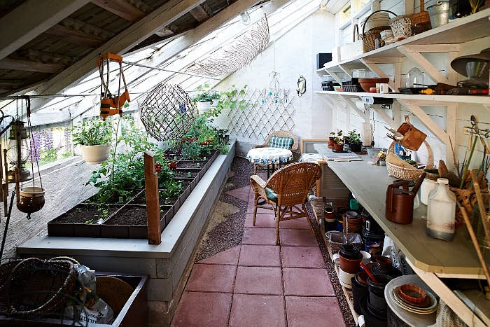 I växthuset kan man både arbeta och njuta över en kopp te. Krukorna är självbevattnande av den typ som förr användes på kontor.