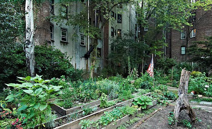 Ungefär 30 små upphöjda träinfattade odlingslotter finns på 6Th & B Garden. Det är inte alls strikt och välordnat som i svenska koloniträdgårdar, men trevligt ändå. En amerikansk flagga fattas inte heller.