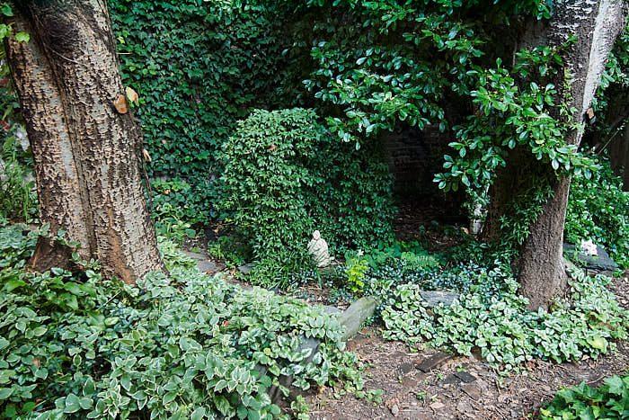 I skuggan mot väggen i 6Th & B Garden frodas bladväxter som rosenplister, vintergröna och murgröna. Statyetter fungerar som klassiska blickfång.