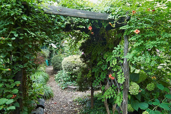 Att markera övergången mellan två olika delar i trädgården med hjälp av en pergola fungerar lika bra i hemträdgårdar som i 9th Street Community Garden and Park.