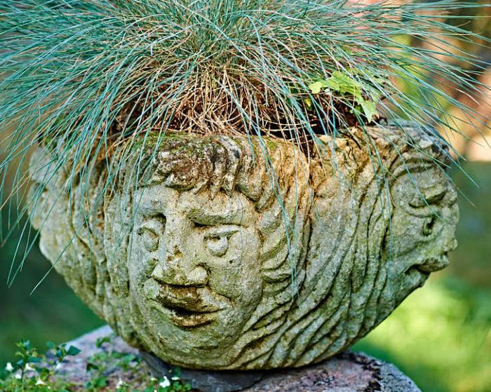 Den inte alls huvudlösa krukan fick Kerstin som present av en bekant. Gräset blåsvingel, Festuca glauca, får övervintra i komposten.