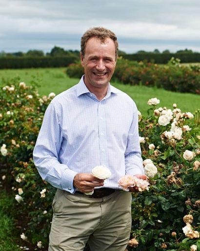 Idag har David Austin den yngre tagit över det dagliga värvet från David Austin den äldre. Lycklig den som får hålla nyförädlade Austin-rosor i sin hand.