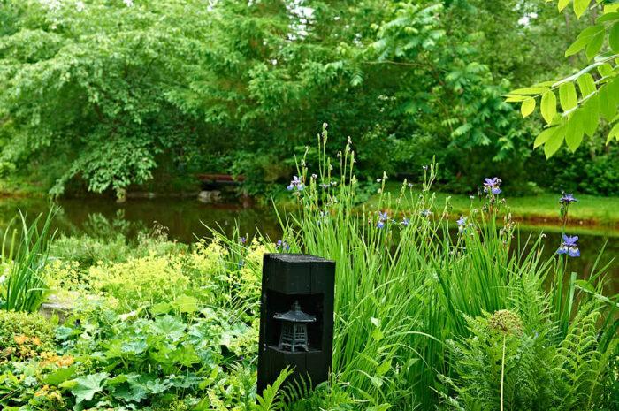 Vid den stora dammen står en japansk lykta i en bit stock som Tommy sågat till och gröpt ut. Invid växer strandiris 'Perry´s Blue'.