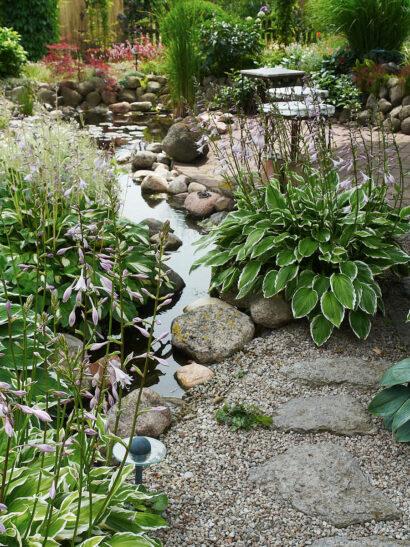 Via en slang under marken pumpas vatten från dammen till en konstgjord bäck. Lutningen är svag och rörelsen i vattnet minimal, den anas på dallringar i blad och strån som doppat sig i ytan. I gruset bland stenarna står funkior.