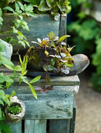 Till sällskap vid sallatslådan har en gammal doja fått agera planteringskärl. Att återanvända gammalt är inte bara billigt och miljövänligt utan också charmigt.