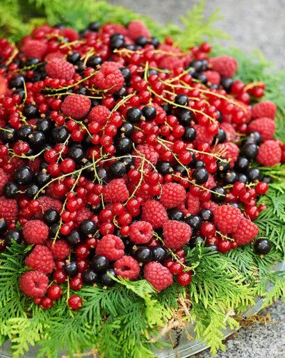 Bär är vackert, svarta och röda vinbär tillsammans med hallon. Mums.